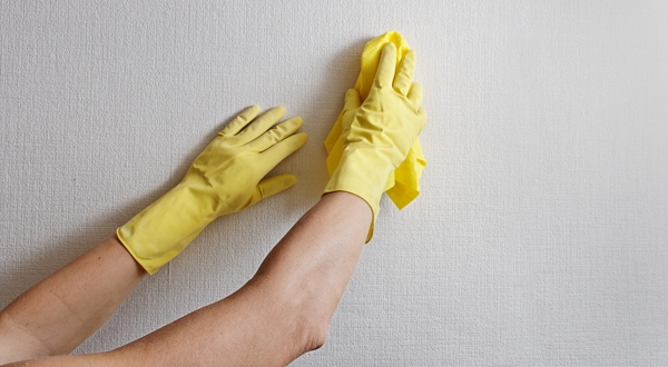 - Pintura para pared lavable ...